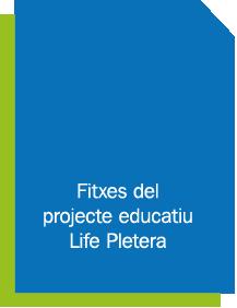 fitxes_edu_lp