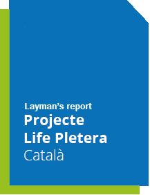 laymanPletera_cat