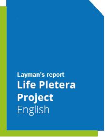 laymanPletera_eng