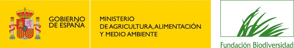 logo-fb-color