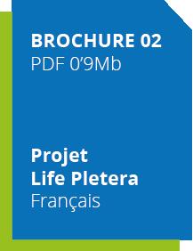 diptic_fr