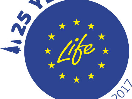 logo_25y_life